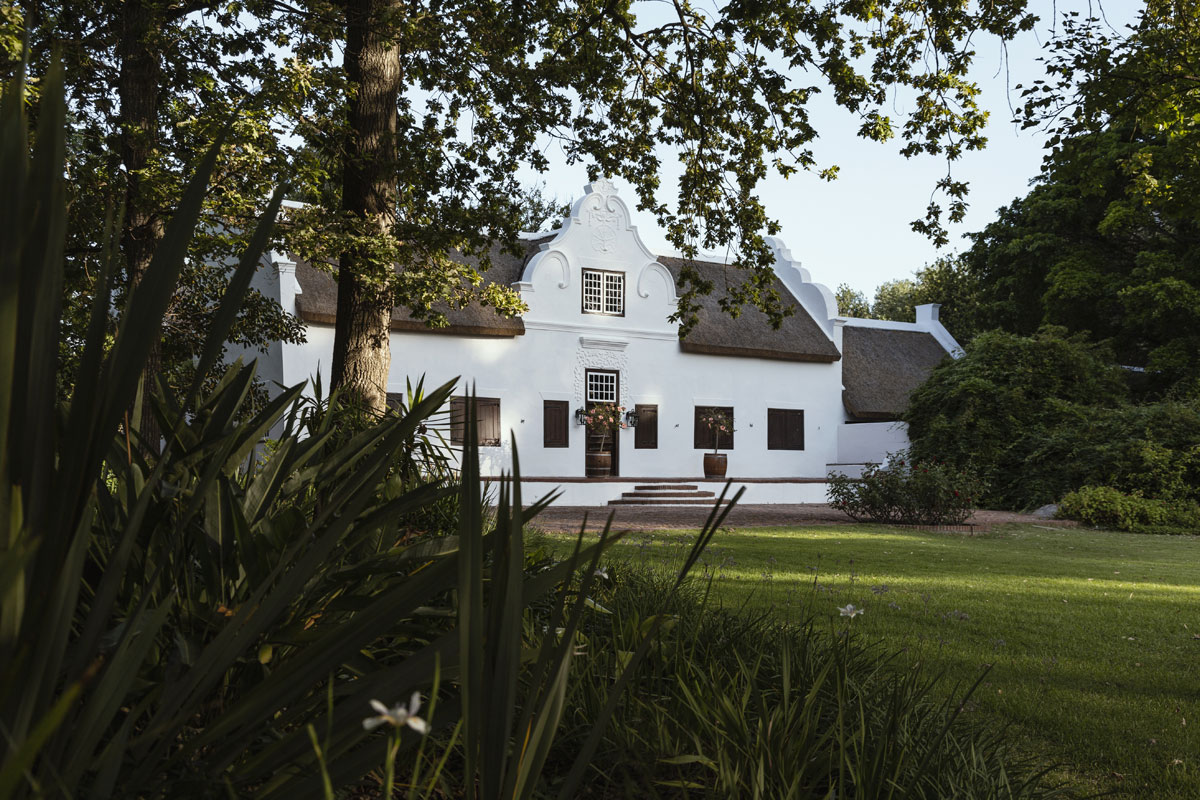 Blaauwklippen Before & After – The Perfect Gift
