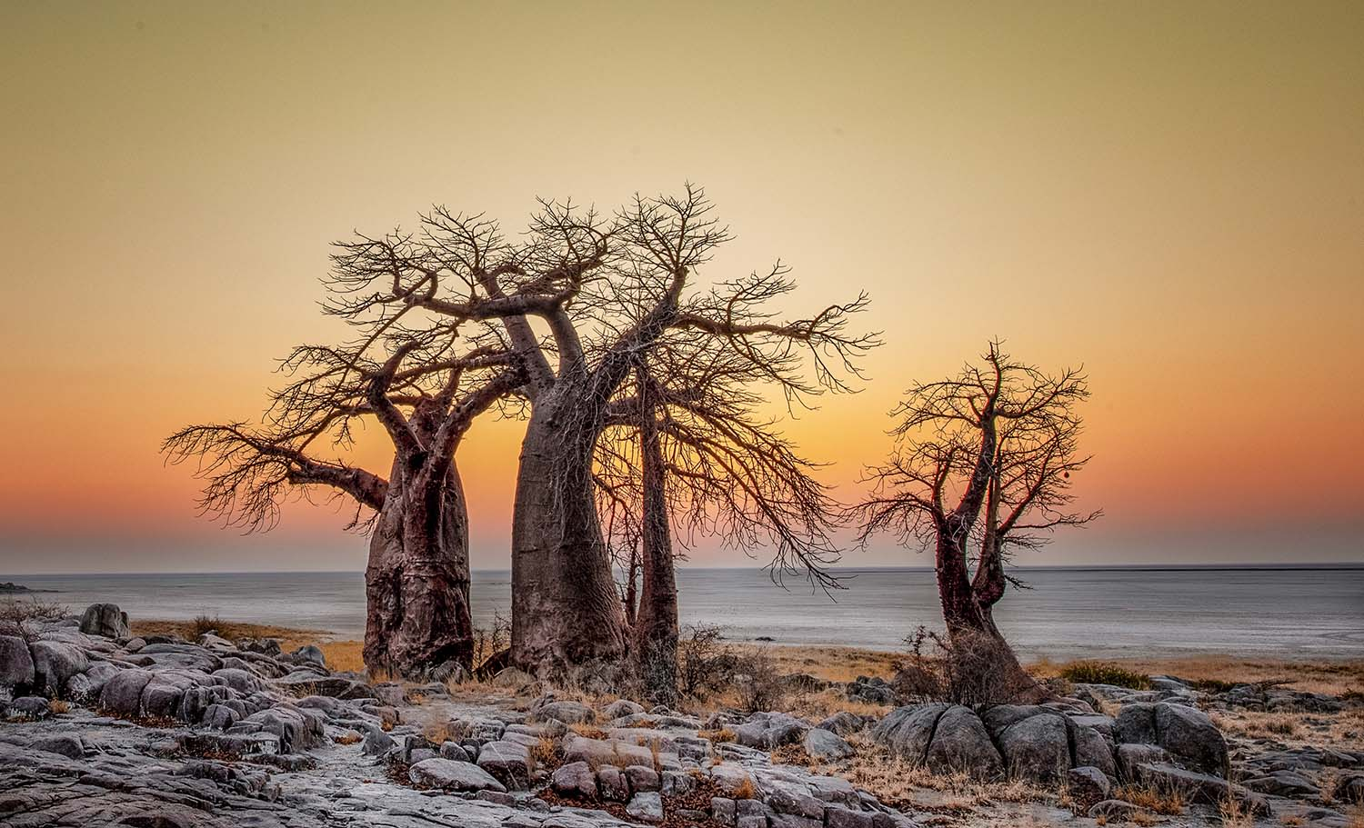 Africa Photo Awards 2020 Celebrates Stunning Images from the Continent